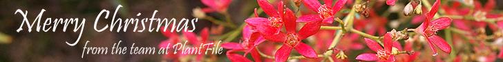 PlantFile Pty Ltd
